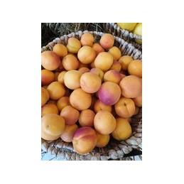 huile de lin bio